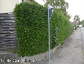 Gilde Gartenbau Bisingen Projekt Zugang zur Haustür + Terasse 04